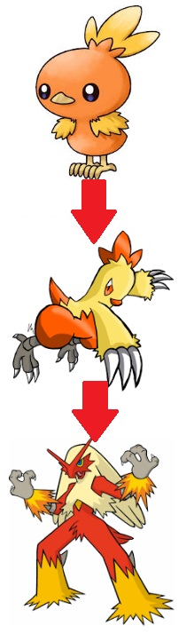 Torchic Evolution