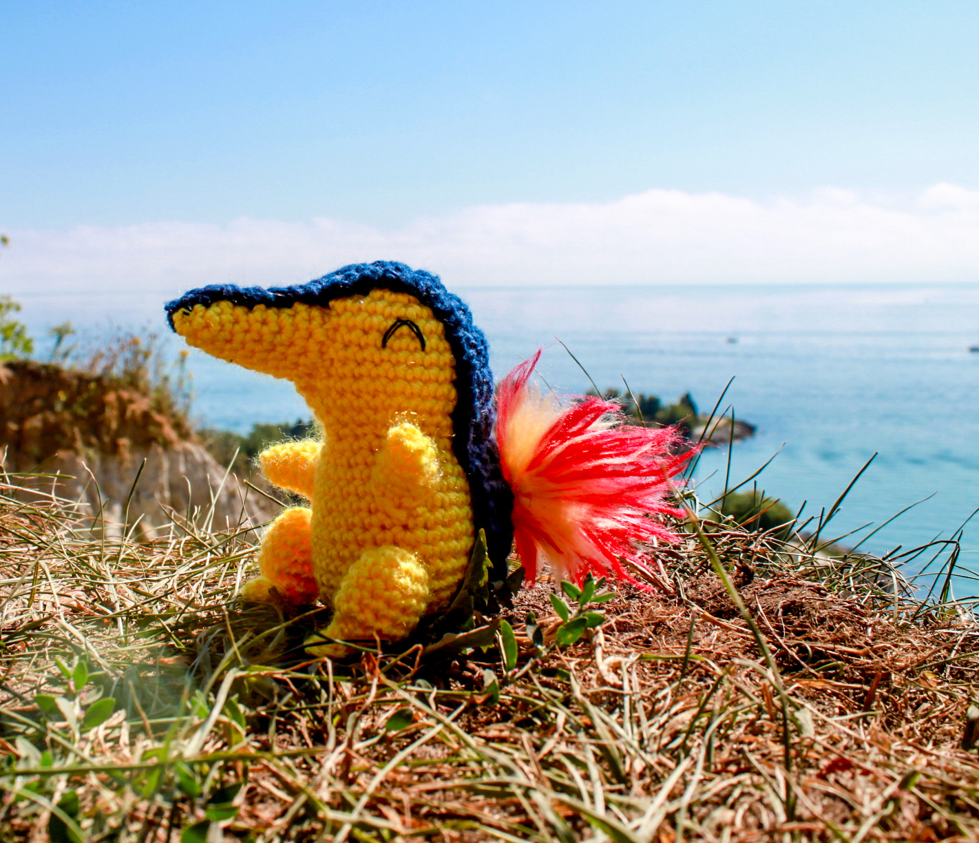 Cyndaquil Amigurumi at Scarborough Bluffs