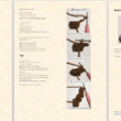 mimikyu-pattern-preview